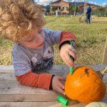 Bambino decora una zucca