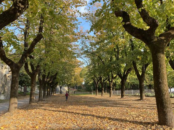 Dove ammirare il foliage in Lombardia con i bambini