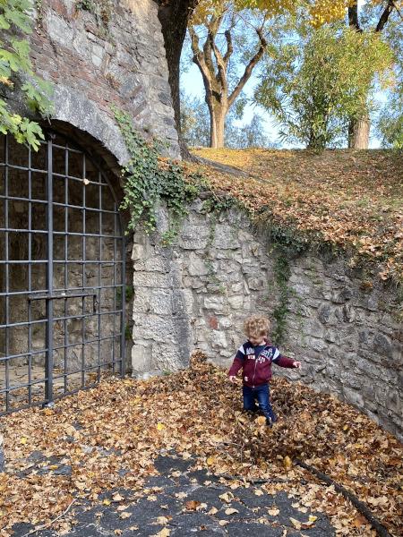 Bambino corre tra le foglie