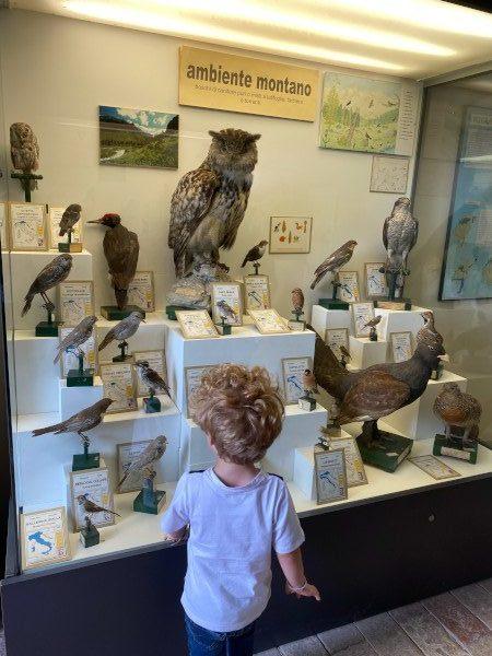 Museo Civico Ornitologico