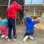 Bambini in fattoria